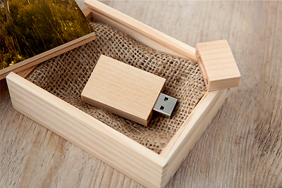 Wooden box and USB stick.png