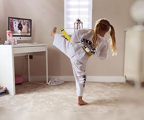 learn-taekwondo-at-home-768x644.jpg