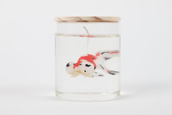 Bubble eye goldfish (White)