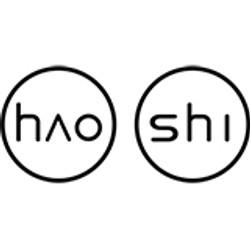haoshi-logo.jpg