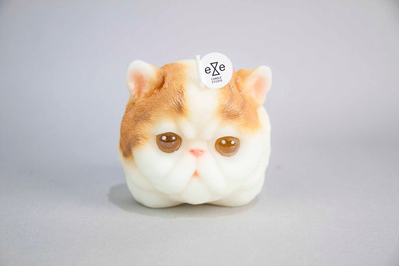 Cat Candle-Persian Cat Candle - yellow and white