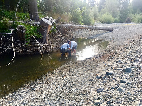 Fry Rescue 2 in robertson.jpg