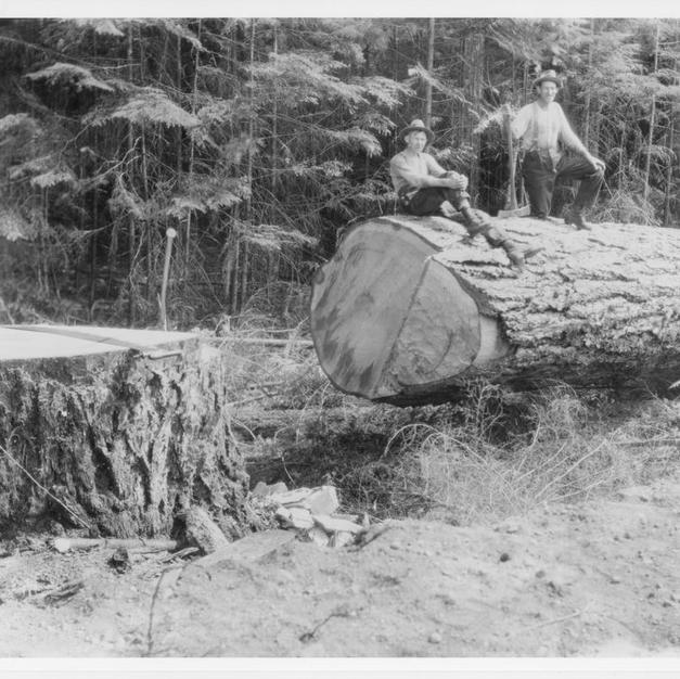 Fallers Cowcihan Lake 1929