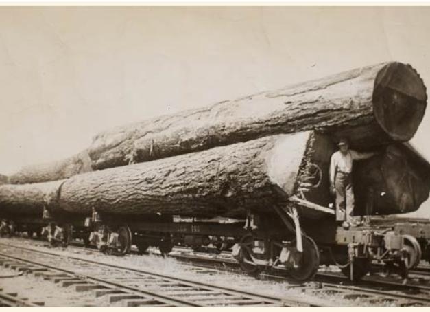 Lake Cowichan logs to Crofton 1941