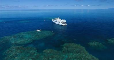sof-vessel-reef-3w857h570crwidth857crhei