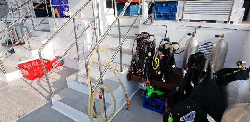 wm-dive-platformw857h570crwidth857crheig