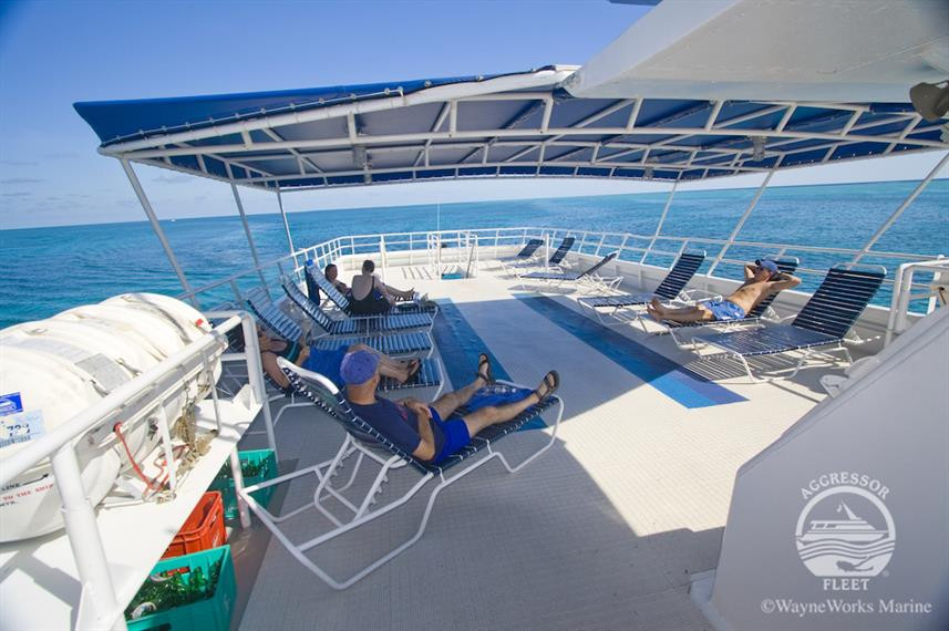 sun-deckw857h570crwidth857crheight570.jp