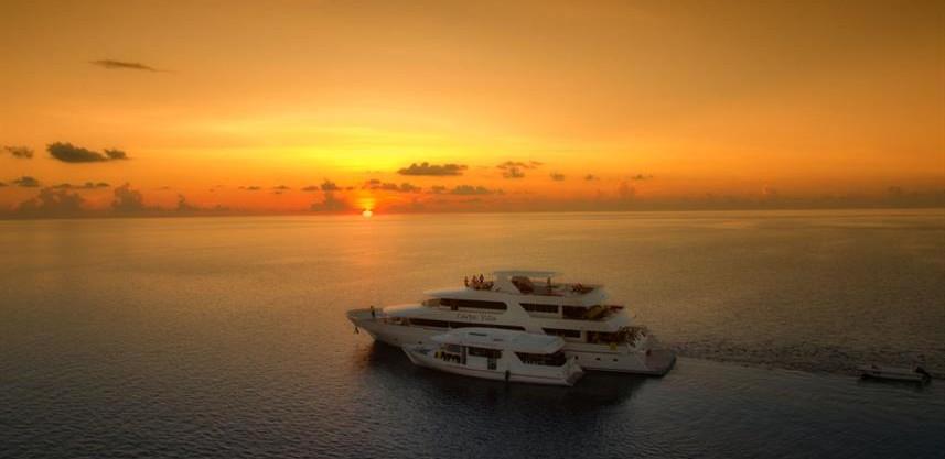 carpe-vita-sunsetw857h570crwidth857crhei