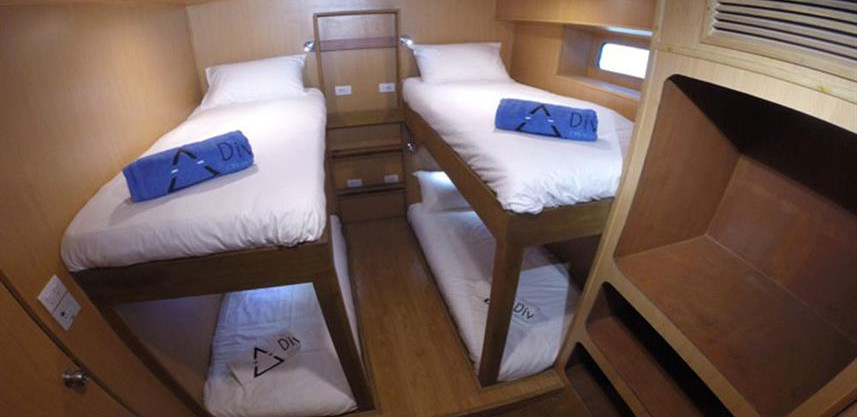 twin_ensuite_cabin_option_4paxw857h570cr
