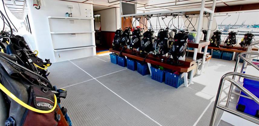 wm-dive-deck--2-w857h570crwidth857crheig