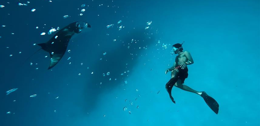 divingw857h570crwidth857crheight570.jpg