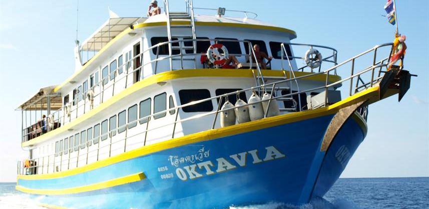 mv-oktavia-boww857h570crwidth857crheight