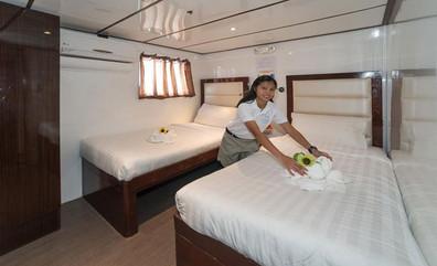 upper_deck_twinw857h570crwidth857crheigh