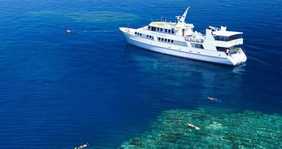 sof-vessel-reef-2w857h570crwidth857crhei