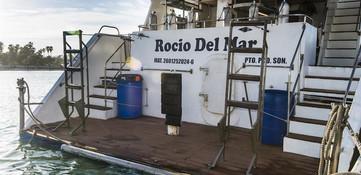 rocio_del_mar_dive_platform3w857h570crwi