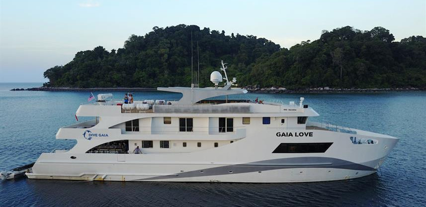 gaia-love-5w857h570crwidth857crheight570