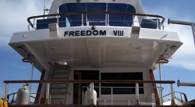 Freedom_VIII_Egypt_5w857h570crwidth857cr