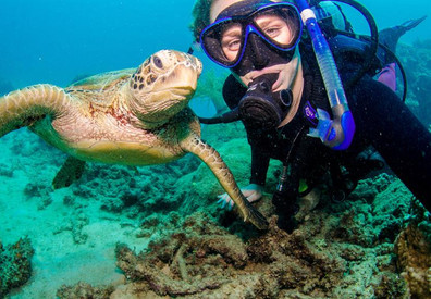 diving-with-sea-turtlew857h570crwidth857