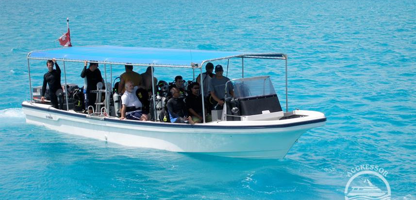 paii-yacht10w857h570crwidth857crheight57