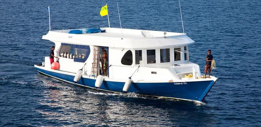 conte-max-liveaboard-maldives-dhoniw857h