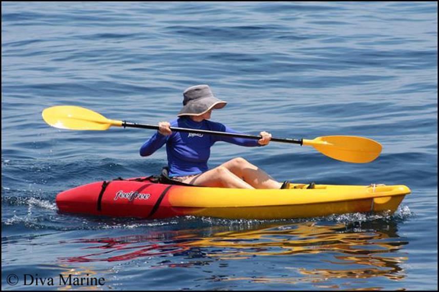 Kayaksw857h570crwidth857crheight570.jpg