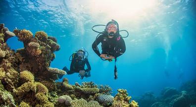 ProDiveCairns_Divers2w857h570crwidth857c