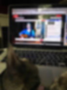 Kitty Kiki watchng singer/songwriter Amelia Blake perform online