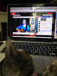 Kitty Kiki watchng singer/songwriter Amelia Blake perform online