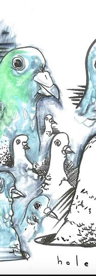 Pigeon- holed