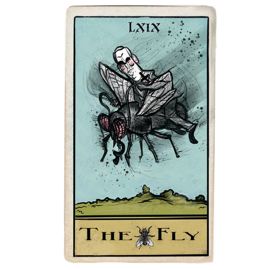 THE FLY (2021)