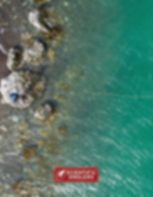 2020 SA Catalog Cover.PNG