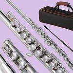 flutes_main.png