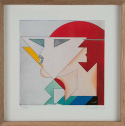 Abstract portrait with red hat