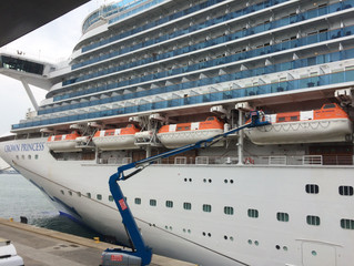 Why Viruses Spread on Cruise Ships