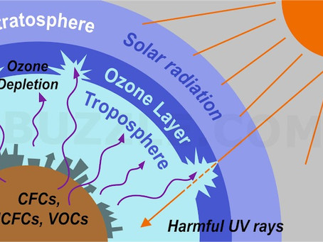 Protecting the Ozone layer: Safeguarding the Environment