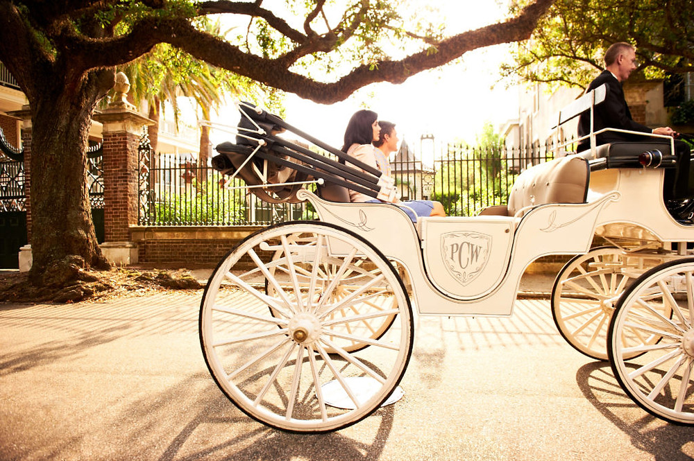private carriage ride through historic downtown Charleston, South Carolina