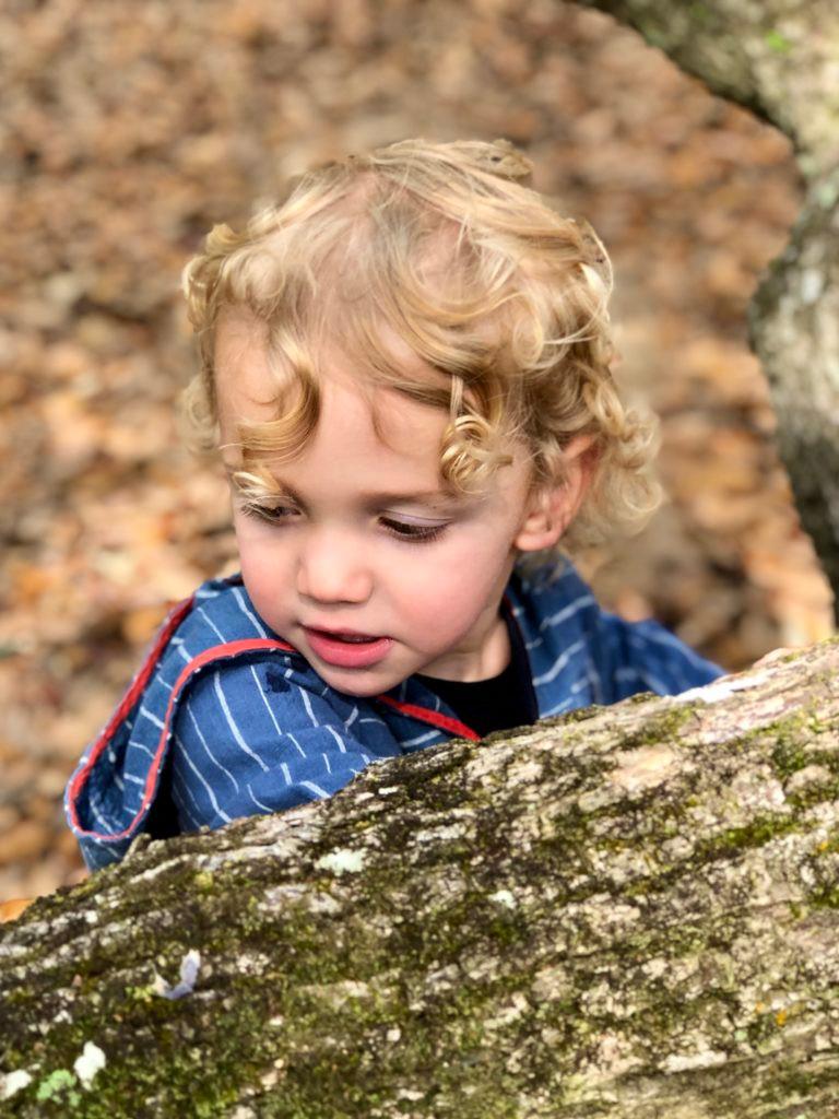 Arlo at the Angel Oak Tree near Charleston, South Carolina