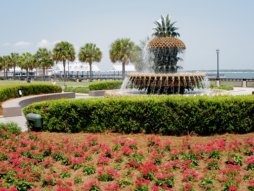 The Best Parks & Playgrounds in Downtown Charleston, South Carolina