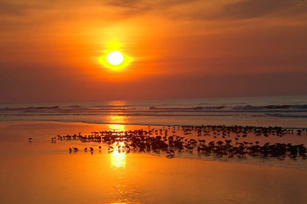 Sunset View from The Sanctuary at Kiawah Island Golf Resort in South Carolina