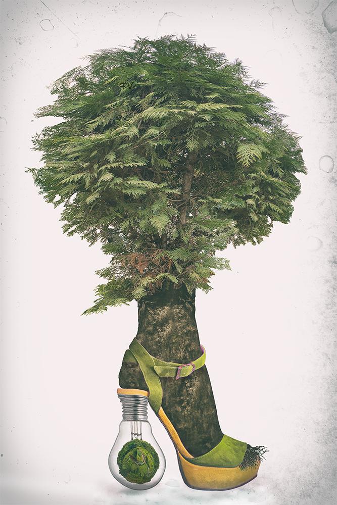 bulb dream tree final