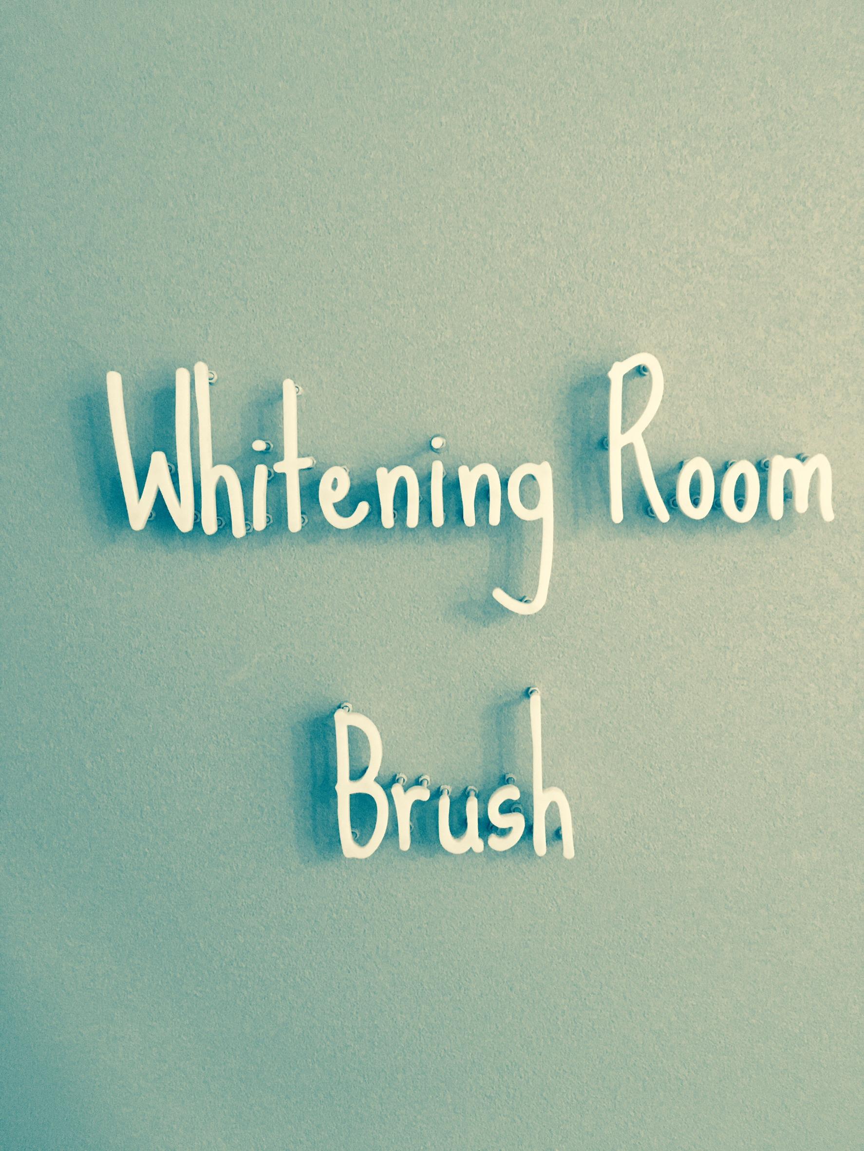 立川|Whitening Room Brush