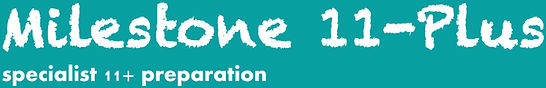 Milestone11+ logo.jpg