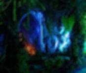 Forbidden Forest Image.jpg