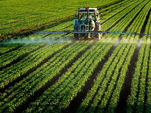 pesticide_ilfede-istockphoto-800.jpg