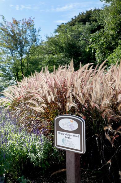 Akron Community Flowerscape Orig (5).jpg