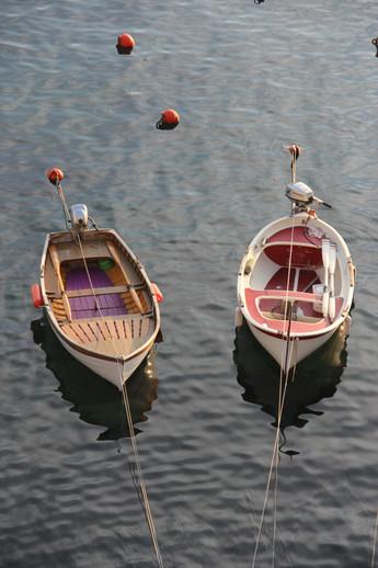 Cinque Terre Boats (1).JPG