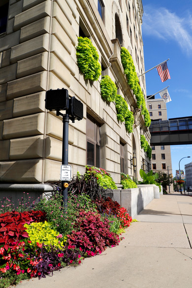 Akron Court House Flowerscape High (21).