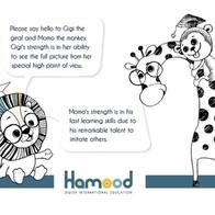 presentation hamood branding22.jpg
