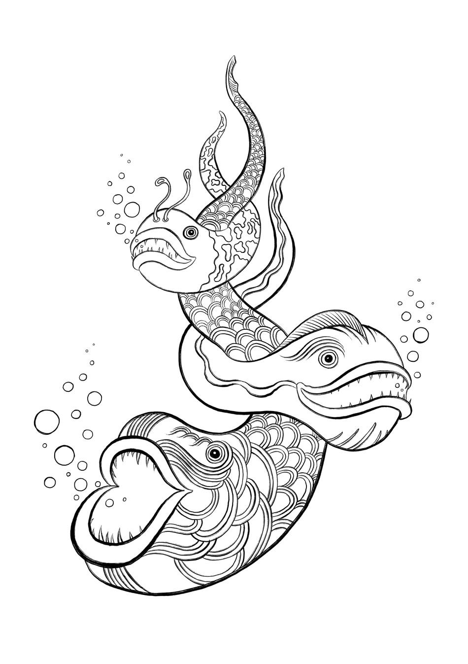 Fish Trifecta