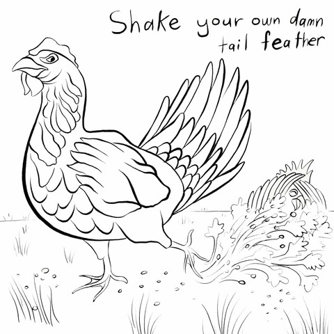 The Chicken and the Rooster